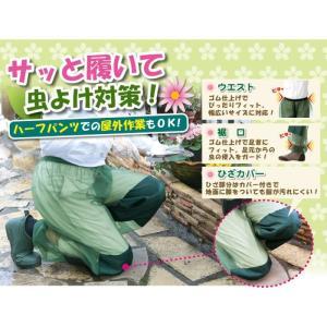 ひざカバー付き 虫よけメッシュパンツ 富士パックス h683|konan