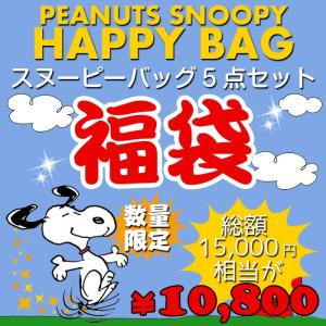 福袋 PEANUTS スヌーピー バッグ福袋 F 新春 数量限定 15000円相当 バッグ 鞄 5点セット ハッピーバッグ ブーフーウー BFWHB-6|konan