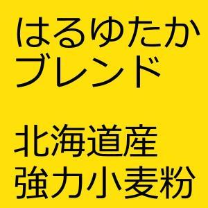 北海道産はるゆたかブレンド 25kg (江別製粉ハルユタカブレンド) 江別製粉 国産小麦粉100% (haruyutaka25)