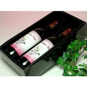 能登半島 ブルーべリーワイン 2本セット|konchikitai