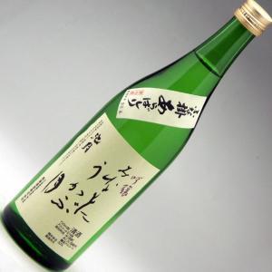 中能登町 池月 あらばしり吟醸酒生酒 みなもにうかぶ 720ml|konchikitai