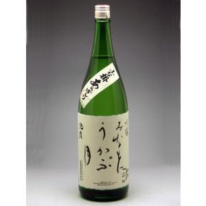 中能登町 池月 あらばしり吟醸酒生酒 みなもにうかぶ 1800ml|konchikitai