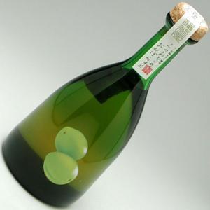 金沢梅酒 くつろぎおんぼらあと 梅 500ml|konchikitai