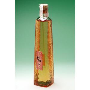 石川県の梅酒 日榮 梅里(ばいり) 500ml|konchikitai