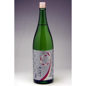 能登の地酒  初しぼり 宗玄 純米生原酒1800ml|konchikitai