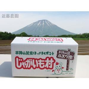 【近藤農園】(農家直送)北海道 羊蹄山麓産【きたあかり】 10kg