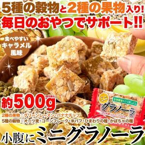 ■品名:ミニグラノーラ(ピロ) ■名称:菓子 ■原材料名:水あめ、オーツ麦、砂糖、コーンフレーク(コ...