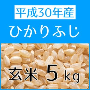 ひかりふじ(H30年産) 玄米 5kg konohanafamily