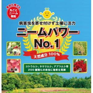 ニームパワーNo.1  1kg 【土壌改良天然資材】|konohanafamily