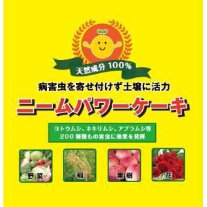 ニームパワーケーキ 1kg 【土壌改良天然資材】|konohanafamily