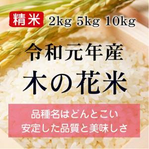 木の花米(H29年産) 精米 10kg|konohanafamily