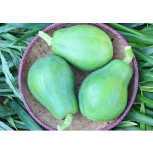 青パパイヤ1kg(2〜3個入り)  (農薬・化学肥料不使用)|konohanafamily