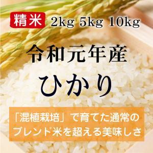 令和元年産 ひかり 精米(農薬・化学肥料不使用)※内容量を選択してください konohanafamily