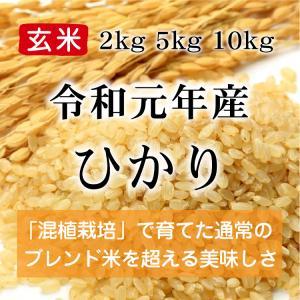 令和元年産 ひかり 玄米(農薬・化学肥料不使用)※内容量を選択してください konohanafamily