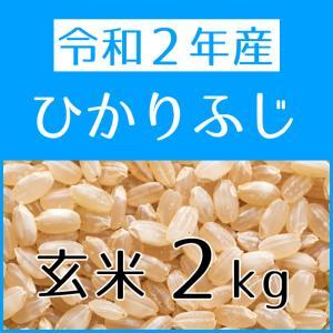 ひかりふじ(令和2年産) 玄米 2kg konohanafamily