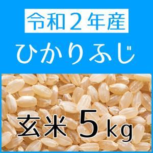 ひかりふじ(令和2年産) 玄米 5kg konohanafamily