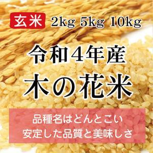 令和2年産 木の花米 玄米(農薬・化学肥料不使用)※内容量を選択してください konohanafamily