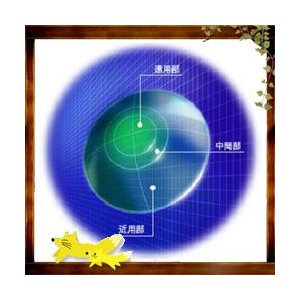 HOYA マルチビューEXライト 【20ポイント付】 1枚  定形外対応! 【遠近両用ハードコンタクト】