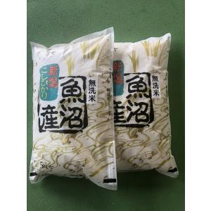 30年産 魚沼産コシヒカリ 無洗米 10kg(5Kg×2袋)  送料無料 農家保有米 処分セール 数量限定