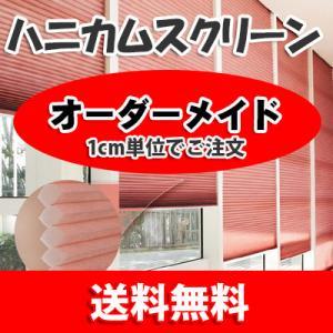 ハニカムスクリーン チェーン式 一般 (デュオ) H03DUO-001 (横40-50 縦40-50...