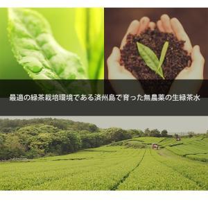 innisfree Green tea balancing cream 50ml イニスフリー グリーンティー バランシング クリーム コスメ 化粧品 美容 koreatrade 04