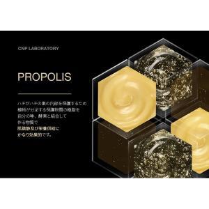 CNP アンプルプロポリスエネルギーアンプル 15ml Laboratory PROPOLIS ENERGY AMPULE/ 美容液 保湿 栄養 肌荒れ 乾燥肌 敏感肌 /韓国コスメnew2019 koreatrade 05
