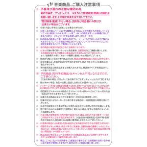 送料無料 BTS - BE DELUXE EDITION 特典付 初回限定ポスター 防弾少年団 RM JIN SUGA J-HOPE JIMIN V JUNGKOOK バンタン 写真集 フォトブック|koreatrade|09