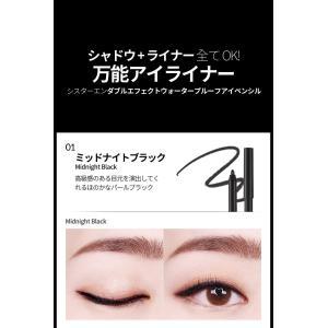 メール便 送料無料 シスターエンダブルエフェクトウォータープルーフアイペンシル(Double Effect Water Proof Eye Pencil) キラキラ SISTER ANN / シスターアン|koreatrade|13