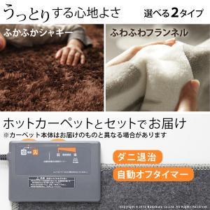 ホットカーペット カバー 洗える ラグマット〔モリス〕 1.5畳(185x130cm)+ホットカーペット本体セット|koreene|02