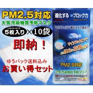送料無料・PM2.5対応(N95規格フィルター使用) 大気汚...