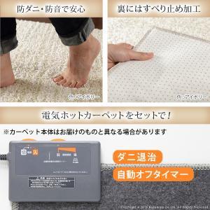 セール)ホットカーペット カバー ミックスカラーホットカーペット・カバー 〔ルーナ〕 1.5畳(200x140cm)+ホットカーペット本体セット 洗える|koreene|02