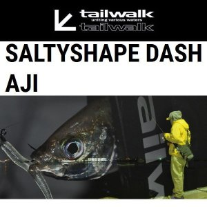 テイルウォーク ソルティシェイプ ダッシュ AJI 68/SL