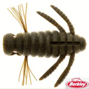 キング青木虫(キングアオキムシ) バークレイ(ピュアフィッシ...