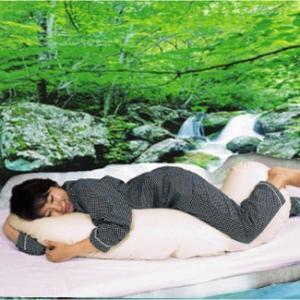 抱き 枕 イオン