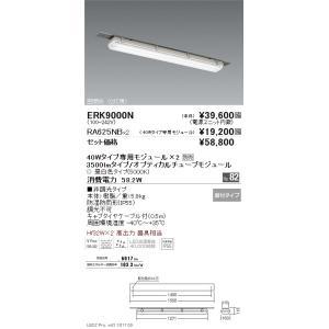 遠藤照明 ERK9000N+RA-625NB-2 ERK9000N RA-625NB×2 ベースライト 人気激安 一般形 LED 流行のアイテム