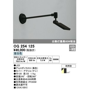 35%OFF 18%OFF T区分オーデリック照明器具 OG254125 屋外灯 LED スポットライト