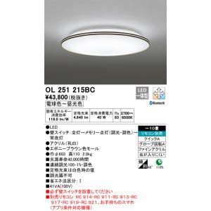 日本未発売 T区分オーデリック照明器具 卓越 OL251215BC シーリングライト リモコン別売 LED