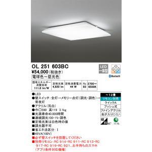 T区分オーデリック照明器具 OL251603BC シーリングライト LED 豪華な 年間定番 リモコン別売