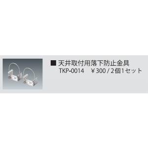 テス・ライティング オプション TKP-0014|koshinaka