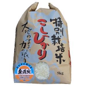 新米 令和元年 スーパーコシヒカリ5kg(無洗米)特別栽培米コシヒカリ コシヒカリ5キロ 無洗米|kosihikari