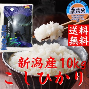 「無洗米」 新潟産コシヒカリ 10kg(送料無料) コシヒカ...