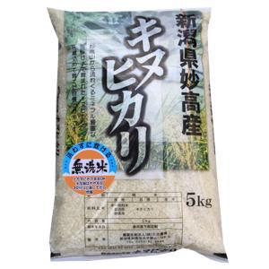 新潟県 妙高産キヌヒカリ5kg(無洗米) (29年産)|kosihikari
