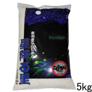 新潟県産コシヒカリデラックス5kg  お米 特A 29年産 新潟県産こしひかり 美味しいお米 5kg コシヒカリ5キロ|kosihikari
