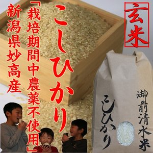 栽培期間中農薬不使用・有機肥料100%使用「御前清水米」コシヒカリ5kg(玄米)令和2年 新米|kosihikari