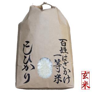 自然乾燥「百姓はざかけ一等米」5kg(玄米) 令和元年 2019年産 天日干し乾燥コシヒカリ |kosihikari
