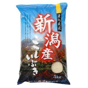 新潟産 米  5kg×1袋  お米 こしいぶき5キロ 29年産 白米 分づき お米安い