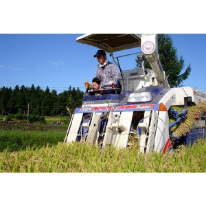 お米 5kg 新潟県産 つきあかり5キロ 新米 令和2年 2020年 美味しいお米 白米5kg 分づき5kg 農家直送 産地直送|kosihikari|04