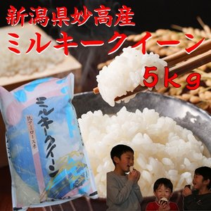 新潟産 米  5kg×1袋  お米 ミルキークイーン5kg 30年産 2018年 白米 分づき 5キロ 美味しいお米|kosihikari