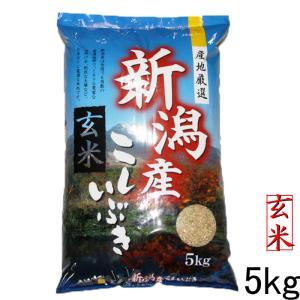 新米 玄米5kg  お米 2019 令和元年 新潟産こしいぶき(玄米) 美味しいお米 新米5kg 5キロ 新潟産5kg 玄米|kosihikari