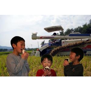 新米 玄米5kg 令和2年 新潟県産 つきあかり5kg(玄米) 2020年 新米 玄米 お米 美味しいお米 5kg 5キロ 美味しい玄米|kosihikari|02